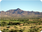 Arizona Land for Sale